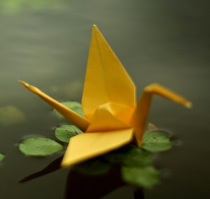 crane-origami-pond 2